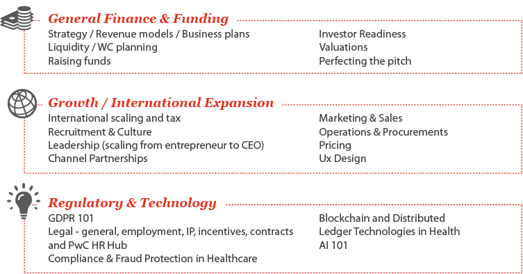 The Scale programme in detail - PwC